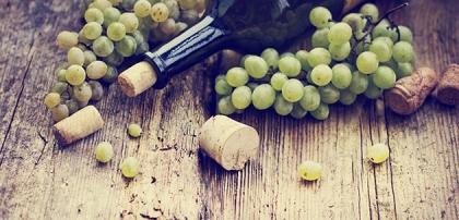 Världens 10 bästa viner